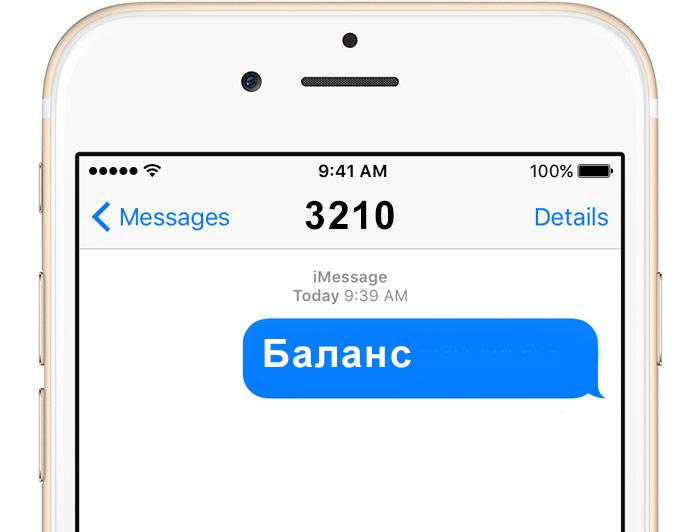 мобильный билет билайн управление по смс